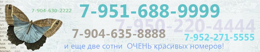 Очень красивые номера, акции и скидки на разные номера!